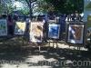 bachillere_ferialibro2011_2