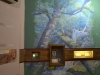 bachillere_museo_ambar_puertoplata_2011_13