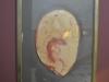 bachillere_museo_ambar_puertoplata_2011_17