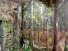 bachillere_museo_ambar_puertoplata_2011_21