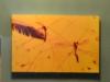 bachillere_museo_ambar_puertoplata_2011_32