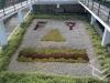 bachillere_teleferico_puertoplata_2011_24