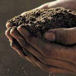 CONVOCATORIA: Becas Maestria en Agricultura y Medio Ambiente – CATIE